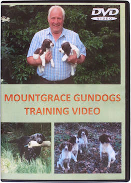 Buccleuch gundogs training dvd - Tv serie hotel san francisco